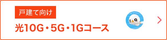 戸建て向け 光10G・5G・1Gコース on auひかり